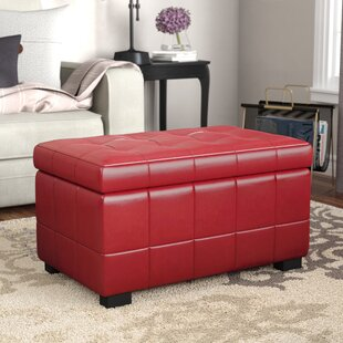 Inexpensive Strickland Storage Ottoman By Winston Porter