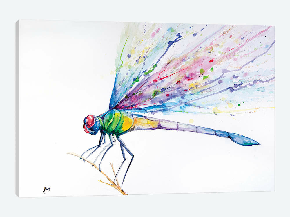 East Urban Home Dragonfly By Marc Allante Graphic Art Print On Wrapped Canvas Wayfair