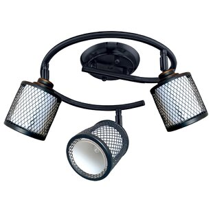 Elenore 3-Light Directional & Spotlight by Latitude Run