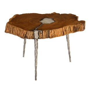 Molten Coffee Table by Phillips Collection Looking for