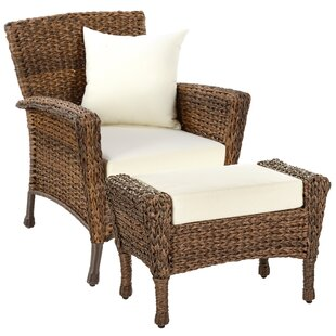 Langford 2 Piece Patio Chair Set with Cushions
