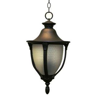 Alcott Hill Phillipstown 4-Light Outdoor Hanging Lantern