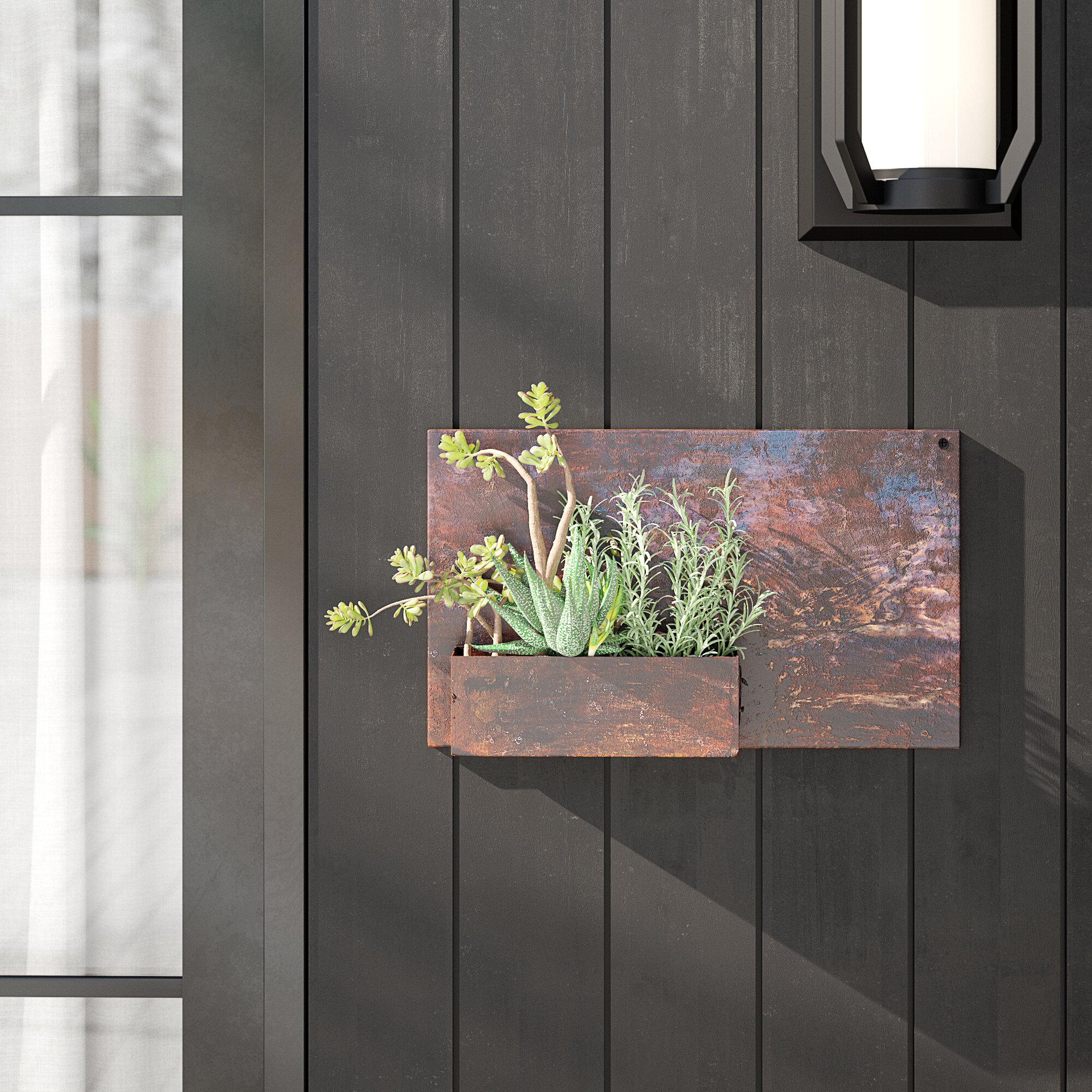 Cynthia Metal Wall Planter Reviews Allmodern