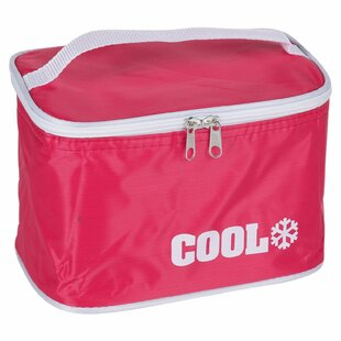 67 Can Picnic Cooler By Symple Stuff