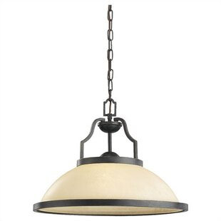 Darby Home Co Bale 1-Light Dome Pendant