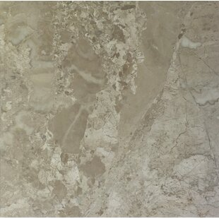 """Diana Royal 18"""" x 18"""" Marble Field Tile in Beige by"""