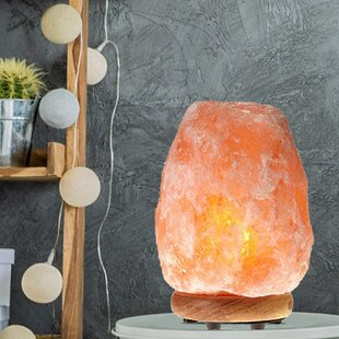 Bungalow Rose Aliana Salt Lamp (Set of 2)