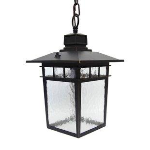 Charlton Home Poythress 1-Light Outdoor Hanging Lantern