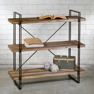 Schlegel Etagere Bookcase by Williston Forge