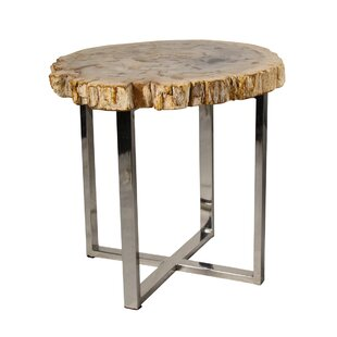 Low priced Petrified Wood End Table by Ibolili