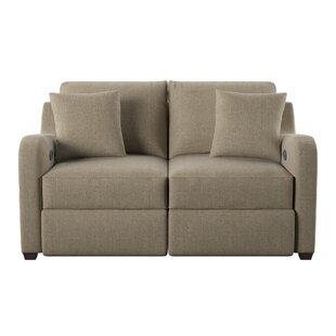 Wayfair Custom Upholstery™ Van Reclining Loveseat