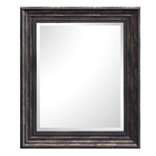Darby Home Co Adalrik Rectangle Plastic Framed Wall Mirror