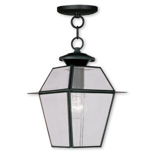 Inexpensive Orchard Lane 1-Light Outdoor Hanging Lantern By Three Posts