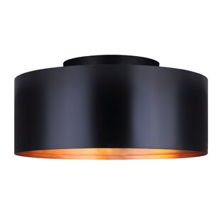 Troxel 2-Light Semi Flush Mount by Brayden Studio
