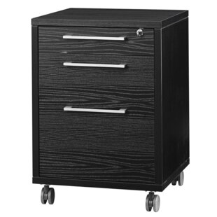 Latitude Run Murphree 3-Drawer Mobile Vertical Filing Cabinet
