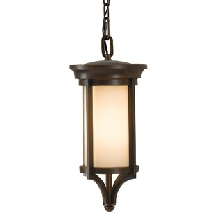 Tiffany 1 Light Outdoor Hanging Lantern By Sol 72 Outdoor