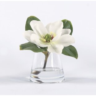 Magnolia Arrangement Wayfair