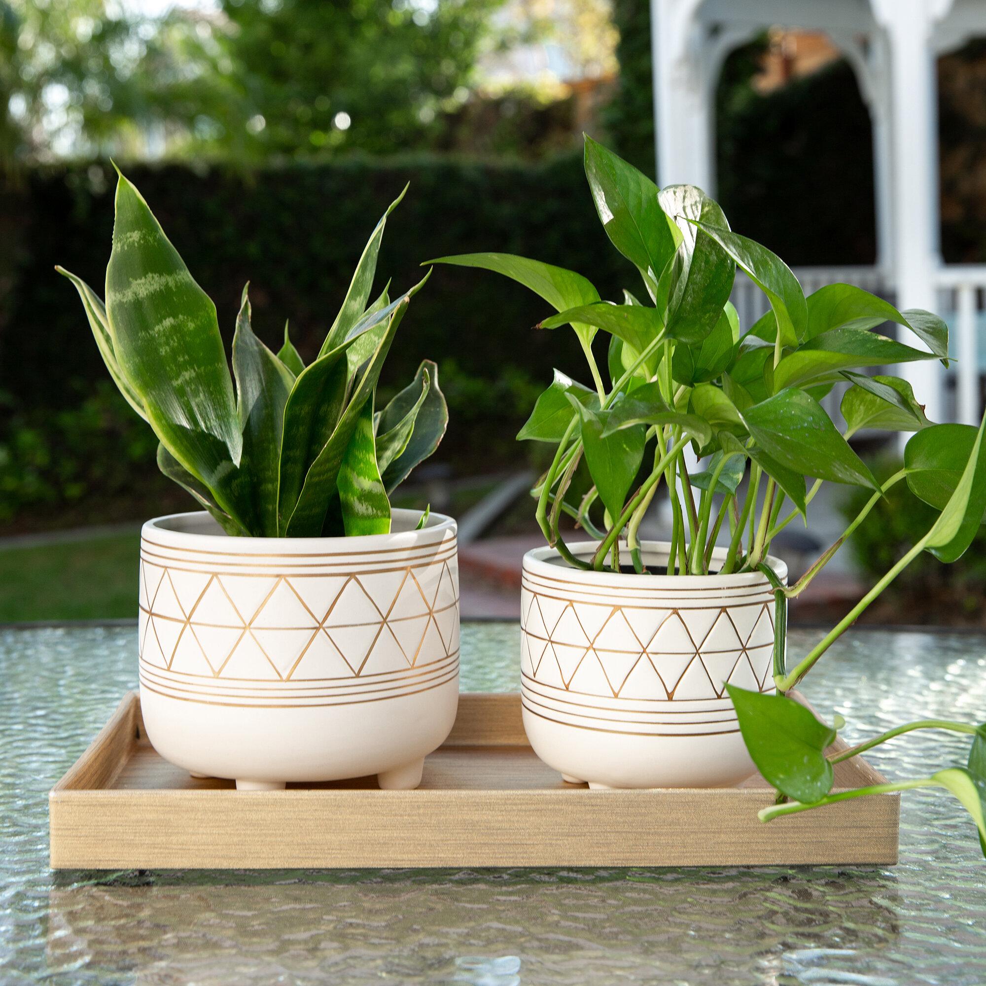 Ceramic Sitting Planter 5 in pot