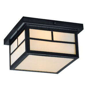 Buy clear Roder 2-Light Outdoor Flush Mount By Loon Peak