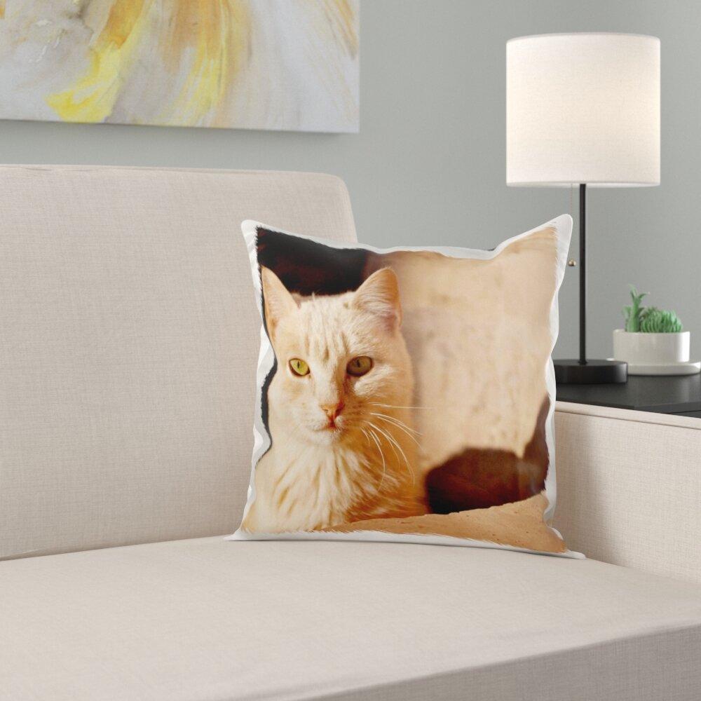 East Urban Home The Cat Inside Kasbah De Taourirt Pillow Cover Wayfair