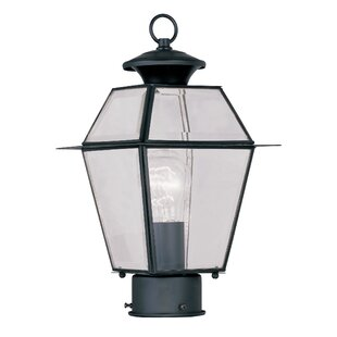 Orchard Lane Outdoor 1-Light Lantern Head by Three Posts