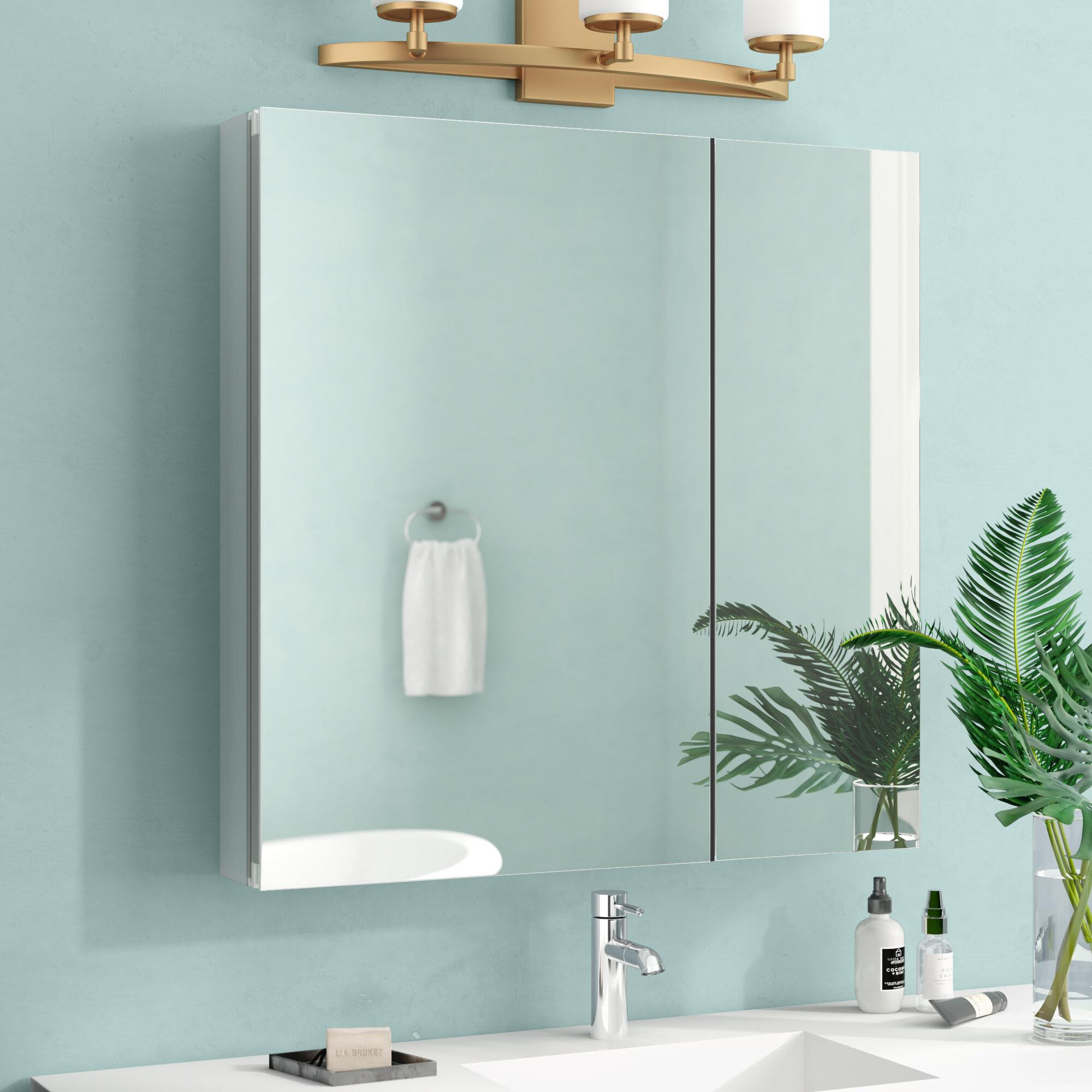Orren Ellis Kellogg Surface Mount Or Recessed Frameless 2 Doors Medicine Cabinet With 3 Adjustable Shelves Reviews Wayfair