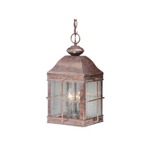 Downie 3-Light Outdoor Hanging Lantern