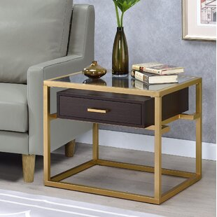 Everly Quinn Danyel Glass End Table