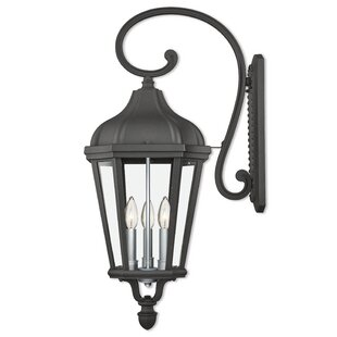 DeMotte 3-Light Outdoor Wall Lantern
