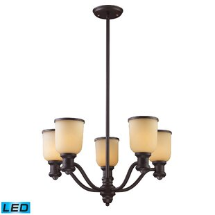 Claflin 5-Light Shaded Chandelier by Darby Home Co