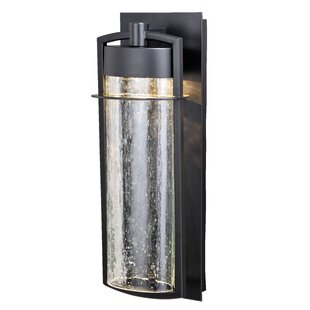 Starling LED Outdoor Sconce