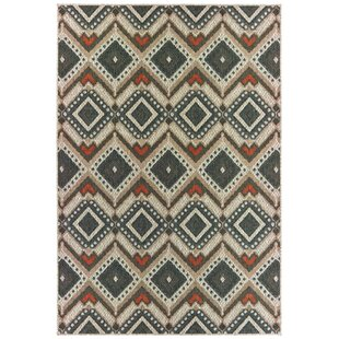 Berryville Tribal Gray/Orange Indoor/Outdoor Area Rug