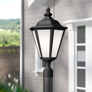 Darby Home Co Eakins 1-Light Lantern Head