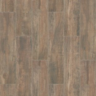 Celestial Plank 8 x 36 Ceramic Field Tile