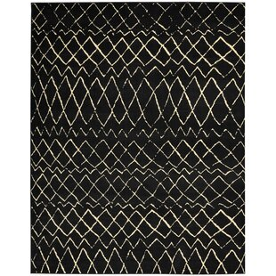 Bargain Petit Borendy Black Indoor Area Rug By Mistana