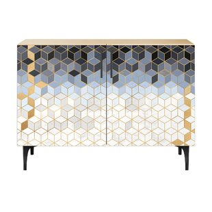 Levin 2 Door Cabinet by Brayden Studio