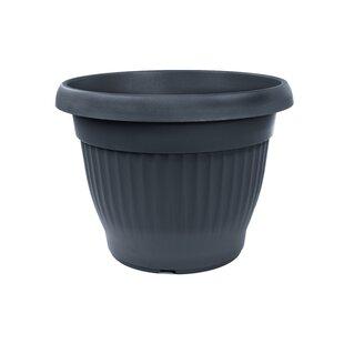Zircon Plant Pot Image