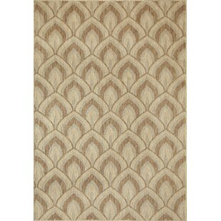 Linde Beige/Brown Indoor/Outdoor Area Rug