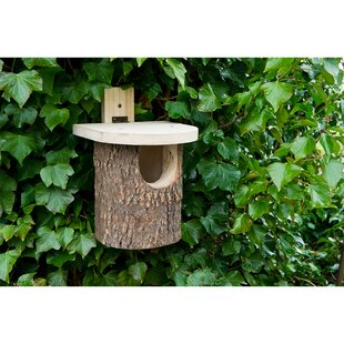 Tjomme Mounted Bird House By Sol 72 Outdoor