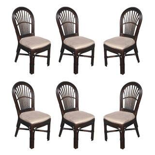 Alim Rattan Upholstered Dining Chair (Set of 6) by Astoria Grand SKU:CC469291 Shop