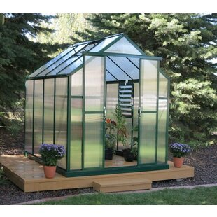 Grandio Greenhouses Element Heavy-Duty Aluminum 6 Ft. W x 12 Ft. D Greenhouse