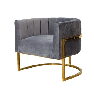Mercer41 Delmonte Metal Frame Barrel Chair