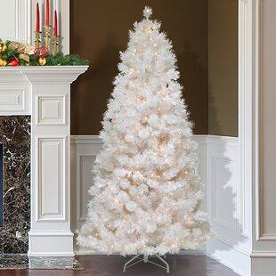 White Christmas Tree With Lights.White Christmas Wayfair