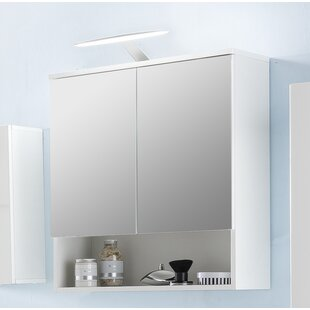 Pure 65 X 79cm Mirrored Wall Mounted Cabinet By Mercury Row