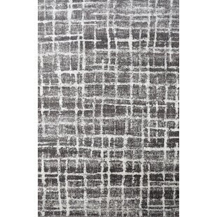 Bargain Briony Black Area Rug By 17 Stories