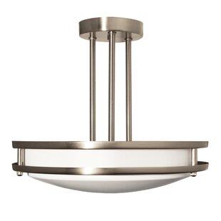 2-Light Semi Flush Mount by Efficient Lighting