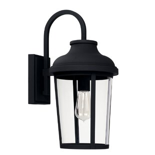 Alcott Hill Castor Outdoor Wall Lantern