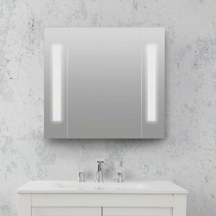 Karla 4.75 x 23.63 Surface Mount Frameless Medicine Cabinet with 2 Adjustable Shelves and LED Lighting by Orren Ellis