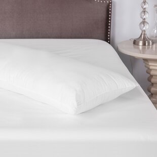 BioPEDIC Coolmax Polyfill Body Pillow