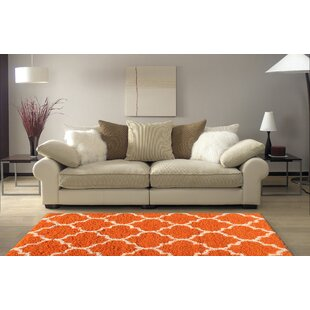 Rishi Shag Trellis Orange Area Rug by Winston Porter